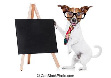 business dog with blackboard