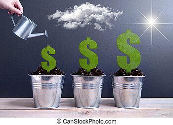 Business dollar growth