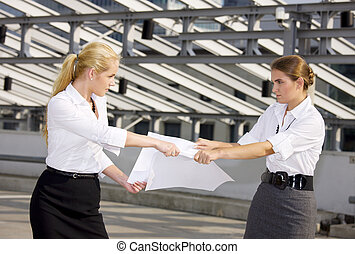 picture of two angry businesswomen fighting for contract