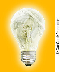 Light Bulb With Dollars Image In It (with clipping path for easy background removing if needed)