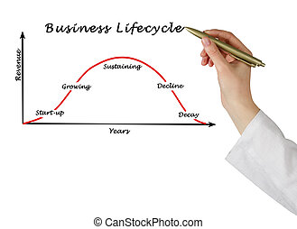 Business lifecycle