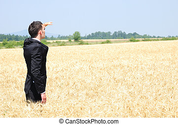 Business man explore the wheat