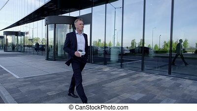 Business man walking outdoors - Mature business man walking...