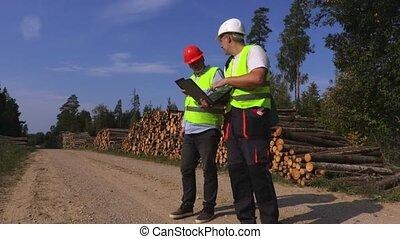 Business men compares the documentation near log pile