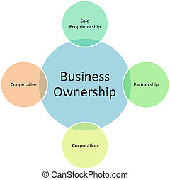 business ownership diagram management strategy concept chart illustration