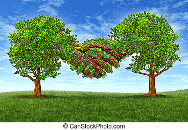 Business partnership growth success with two growing gree trees in the shape of two hands hand shaking together as a financial symbol of agreement and contract between two companies or business men.