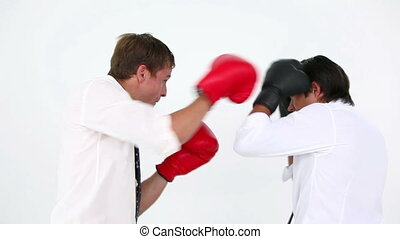 Business people boxing against white background