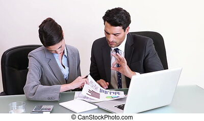 Business people checking charts