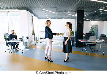 Business people in the office. Two women shaking hands.