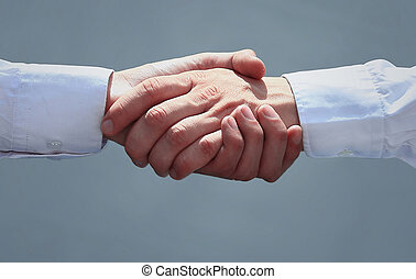 business people shaking hands in office