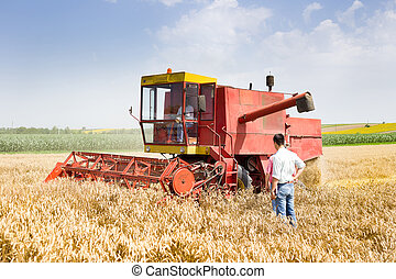 Business people with combine harvester