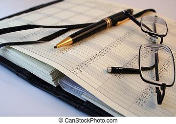 Business planner  - Professional Organiser