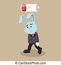 business rabit low energy