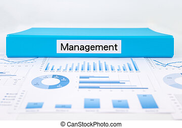 Business strategic management with graph analysis and evaluation