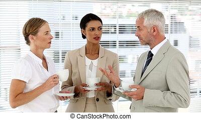 business, sur, café, bavarder, équipe