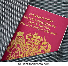 Passport travel document business identity card passport stock business travel passport colourmoves