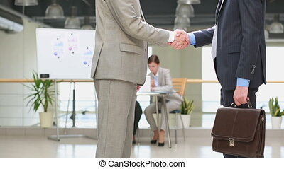 Business welcoming - Business partners welcoming each other...