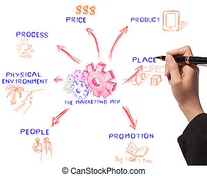 business woman drawing the marketing mix idea board of...