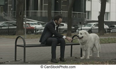 Businessman and his dog playing with stick in the city park siting on bench