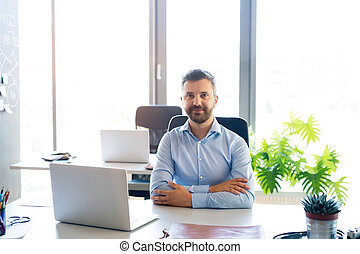 Businessman at the desk with laptop in his office.
