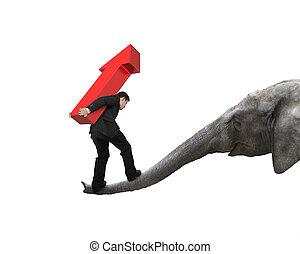 Businessman carrying arrow up balancing on elephant trunk