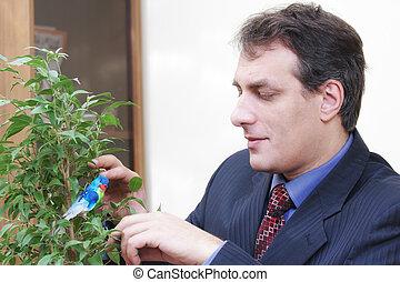 Businessman growing plant