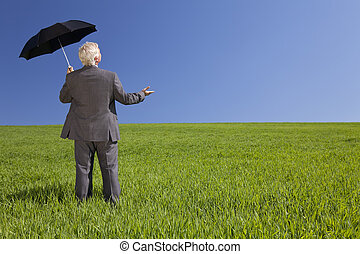 Businessman In A Green Field With An Umbrella - Business...