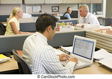 Businessman in cubicle at laptop