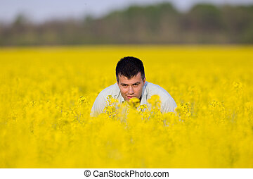 Businessman in rapeseed field