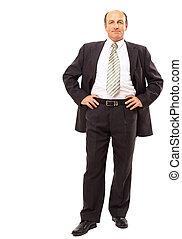 businessman isolated on white background