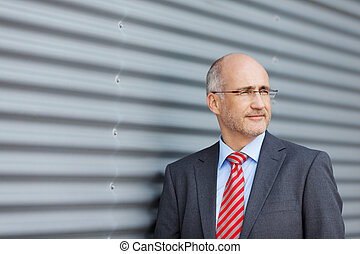 Businessman Looking Away By Shutter