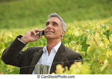 Businessman on phone in vineyards