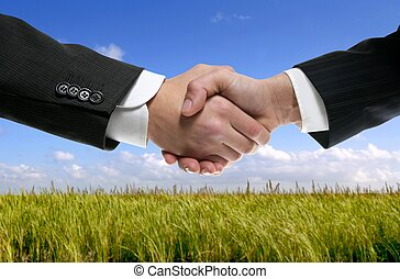 Businessman partners shaking hands in nature - Businessman ...