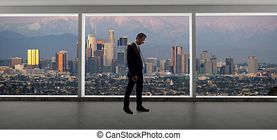 Businessman Regional Manager Looking at Los Angeles in Winter