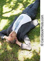 Businessman relaxing on grass