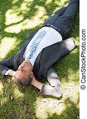 Businessman relaxing on grass