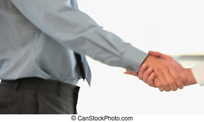 Businessman shakes hand with his coworker against a white...