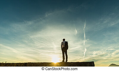 Businessman standing on the skyline on a wall