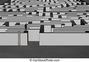 Businessman standing on top of maze wall with wooden ladder