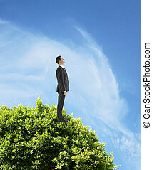 businessman standing on tree