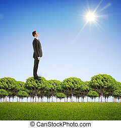 businessman standing on trees