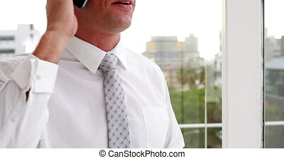 Businessman talking on his phone