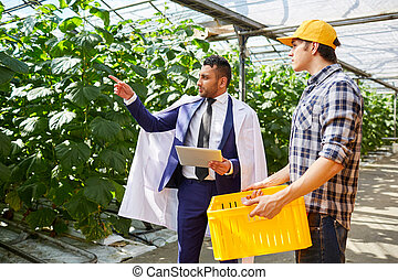 Businessman talking to greenhouse worker