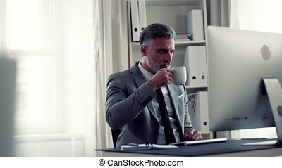 Businessman with computer sitting at the table in an office,...