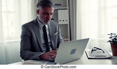 Businessman with computer sitting at the table in an office, working.