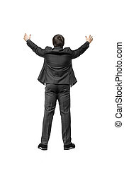 Businessman with hands raised. On a white background. View...