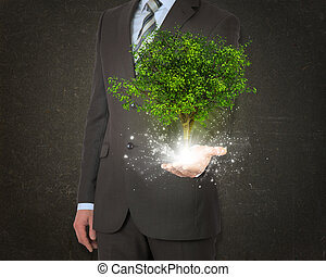 Businessmen hold magical green tree and rays of light