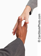 Businesspeople going to shakehands