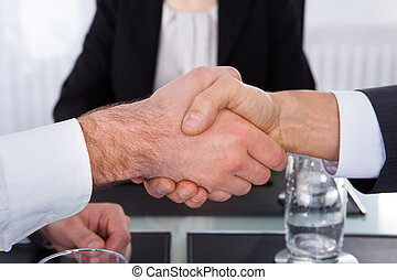 Businesspeople Shaking Hand - Close-up Of Businesspeople...