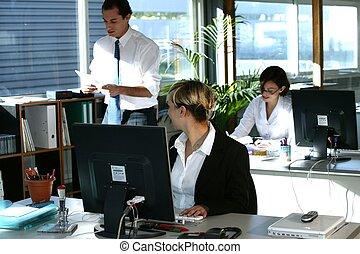 businesspeople, travailler, bureau